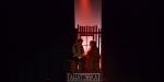 Fiddler-Oban-Spotlightmtg-Deb-Preview0670
