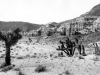 red_rock_canyon_1933